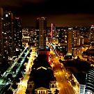 Night Landscape San Diego Part 2 by devinadewi