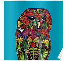 tawny owl blue Poster