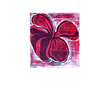 red hibiscus artprint  Photographic Print