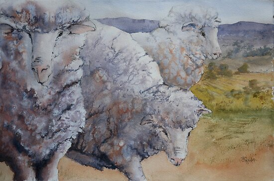 Ewes and Views by Pauline Winwood