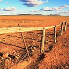 Fenceline by dmbphotography