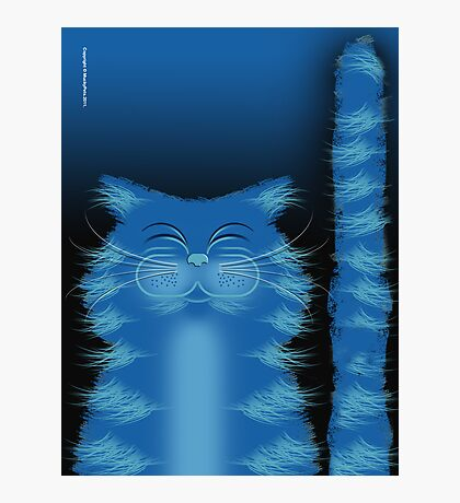 RIBBAR THE CAT Photographic Print