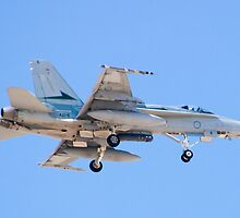 #A21-4 RAAF F/A-18A Hornet by Henry Plumley