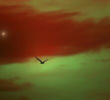 FLY ME TO THE MOON by leonie7