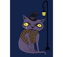 Sad Cat with Moonlight Memories Photographic Print