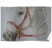 HORSE HANDMADE Poster