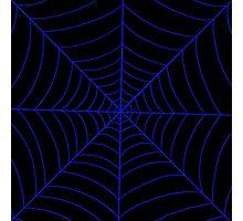 spider web (dark blue) Photographic Print