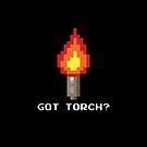 Got Torch? by zojoi