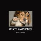 Who's Awesome by Dannydoesrock