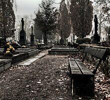 Cemetery by Zora