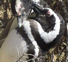 Penguin Love by SlenkDee