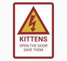 Electric Kittens by David Hartman
