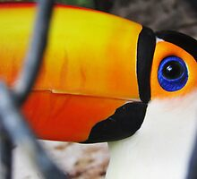 Toucan Sam Behind Bars by SlenkDee