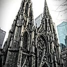 St. Patrick's Cathedral by Robin Lee