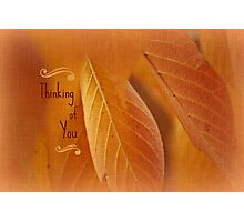Thinking of You ~ Leaves  Photographic Print