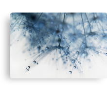 blueberry blue Metal Print