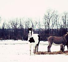 a winter day by beverlylefevre