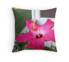 Hybiscus in Summer Throw Pillow