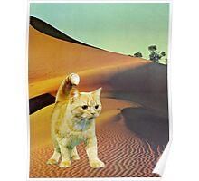 Dune Warrior Poster