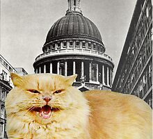 St Paul's Puss by Fleurabelle