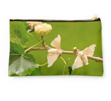domesticated Silkmoth on a white mulberry branch  Studio Pouch