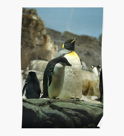 Penguin pride! Poster