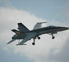 F/A-18A Hornet @ Temora Warbirds Airshow 2011 by muz2142
