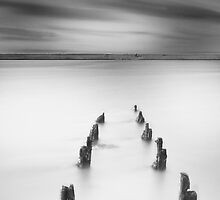 Remains.  by Daniel  Bristow
