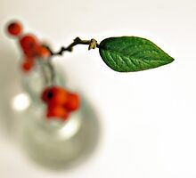 a branch of red berries for my little vase by Gregoria  Gregoriou Crowe