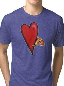 Love Dachshunds Tri-blend T-Shirt