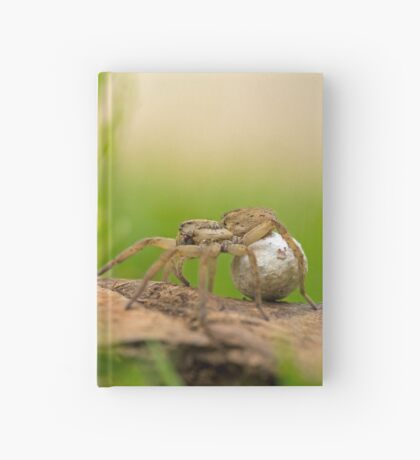 Wolf spider (family Lycosidae). This female wolf spider is carrying her egg case (cream, right) in her palps and fangs.  Hardcover Journal