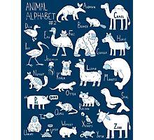 Animal Alphabet #2 Photographic Print
