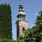 Saltzburg Steeple by Escott O. Norton