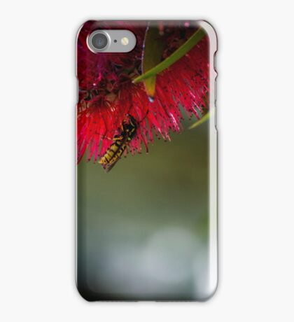 honey collection iPhone Case/Skin