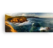 Wild West Coast Canvas Print
