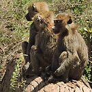 3 Wise men in Africa by maureenclark
