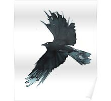 Crow Wings Poster