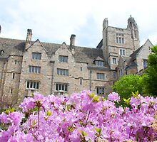 Yale University by Hiebl Photography