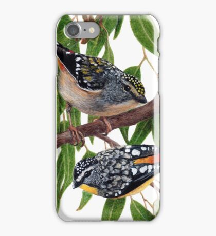 Spotted pardalotes iPhone Case/Skin