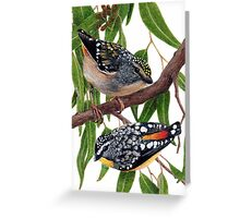 Spotted pardalotes Greeting Card