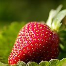 The strawberry that tasted as good as it looks by Clare Colins
