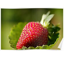 The strawberry that tasted as good as it looks Poster