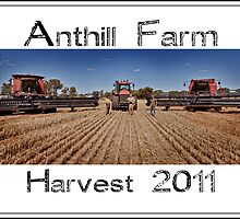 Anthill Farm ~ Harvest 2011 by Pene Stevens