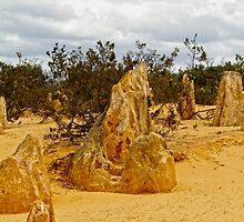 The Pinnacles, Cervantes, Western Australia #4 by Elaine Teague