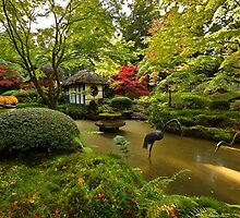 Japanese Garden in full autumn colour by Martin Lawrence