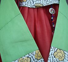Korean Hanbok Traditional Dress by Jane McDougall