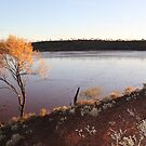 Gorgeous Lake Ballard by Cheryl Parkes
