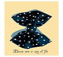 Bows Are A Way Of Life Photographic Print
