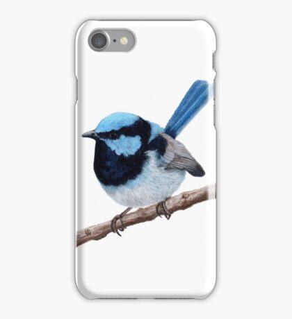 Superb fairy-wren iPhone Case/Skin