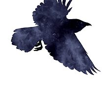 Crow by blackeyedmarti